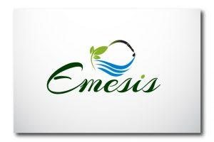 Emesis 19