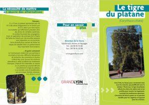 brosura-tigrul-de-platan-lyon-1024x719